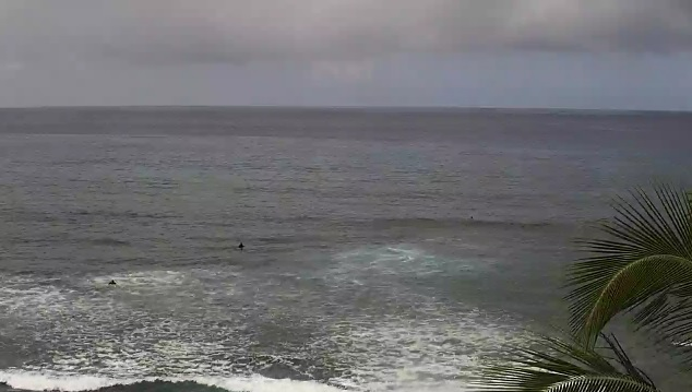 webcam Banyans Kealakekua Hawái