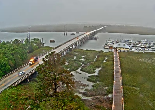 Webcam Savannah Beach
