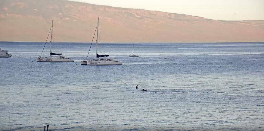 webcam Lahaina Harbour Maui
