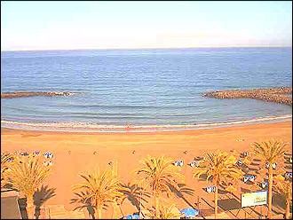 Webcam Playa de Troya, Playa de las Americas Teneriffa