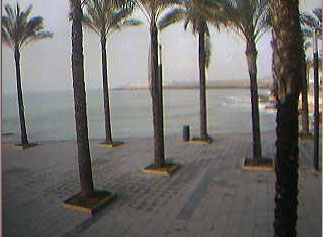 webcam Torrevieja Alicante